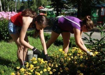 Трудовое лето в ЦДТ для юных жителей