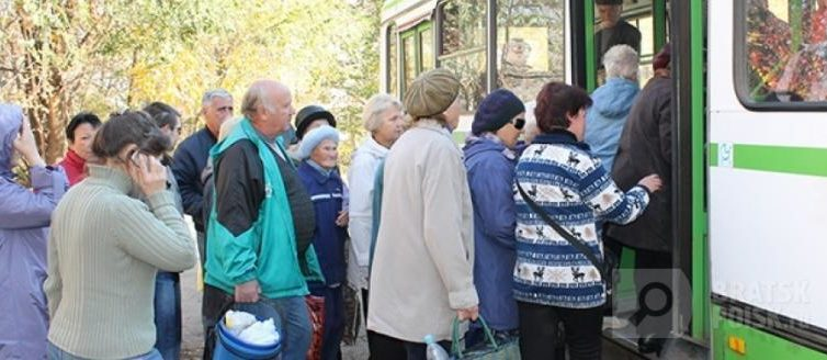 """С 1 июня начнет курсировать дачный автобус """"Кедр - Полюс"""""""