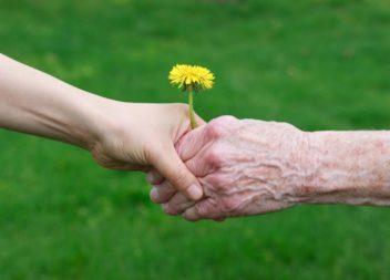 Куда обратиться одиноким пожилым гражданам при необходимости покупки продуктов и лекарств