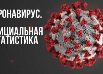 Официальная информация по Республике Коми по ситуации с коронавирусом на 28 октября